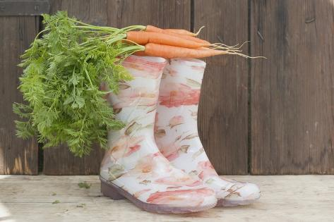 Carrots on Top of Rubber Boots Photographic Print