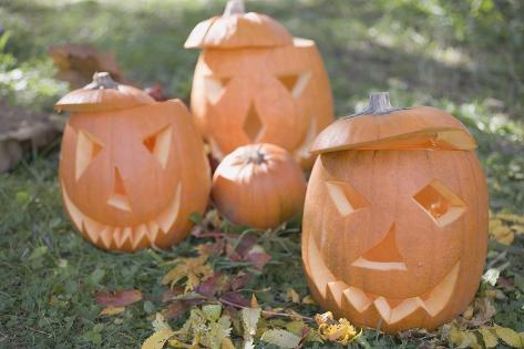 Carved Pumpkin Faces in Garden Photographic Print