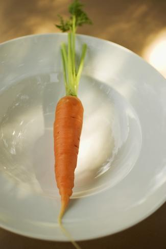 Fresh Carrot on White Plate Photographic Print
