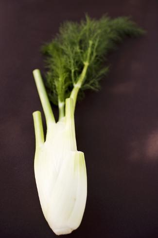 Fresh Florence Fennel Photographic Print