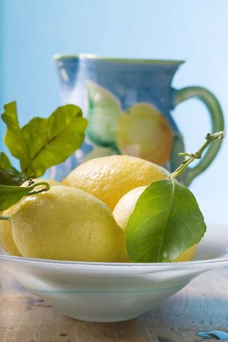 Fresh Lemons with Leaves in Bowl Photographic Print