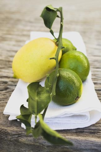 Limes and Lemon on White Cloth Photographic Print