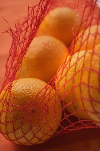 Oranges in Net Photographic Print