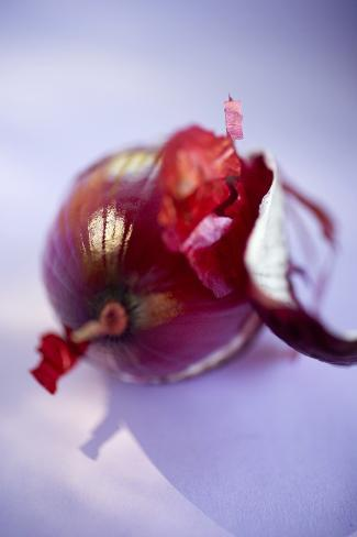 Red Onion, Partly Peeled Photographic Print