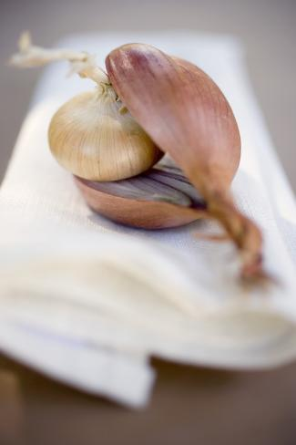Small Onion Inside Halved Red Onion Photographic Print