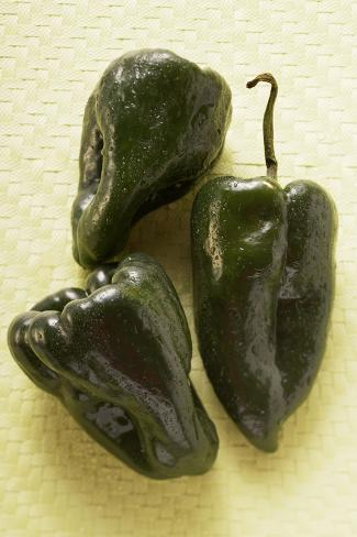 Small Peppers (Poblano from Mexico) Photographic Print