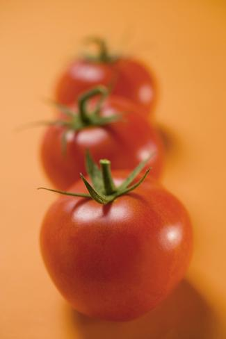 Three Tomatoes on Orange Background Photographic Print
