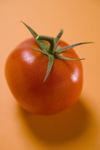 Tomato on Orange Background Photographic Print