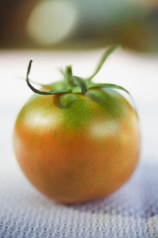 Tomato on White Cloth Photographic Print