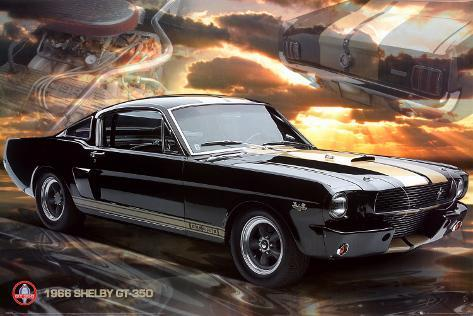 Ford Shelby - Mustang 66 GT 350 Poster