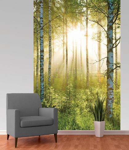 Forest deco wallpaper mural behangposter bij for Art deco wallpaper mural