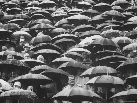 Fans, Sitting in Rain, at Purdue Homecoming Game Photographic Print