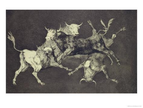 Folly of the Bulls, from the Follies Series, circa 1815-24 Giclee Print