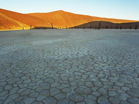Dunes rising from dry bed at Dead Vlei Photographic Print