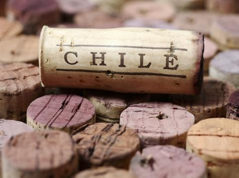 Wine Corks from Chile Valokuvavedos