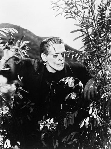 Frankenstein: Frankenstein, 1931 Fotoprint