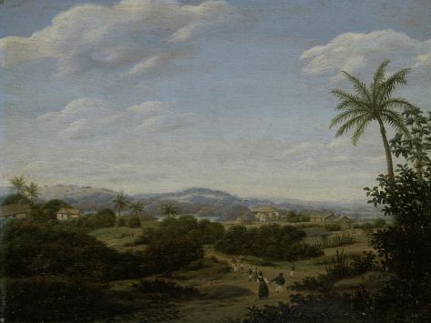Brazilian Landscape Art Print