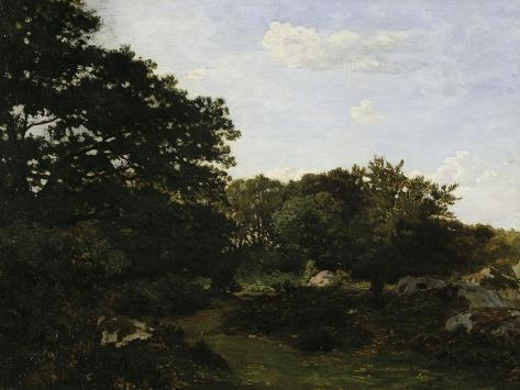 Edge of the Forest in Fountainbleau, c.1865 Giclee Print