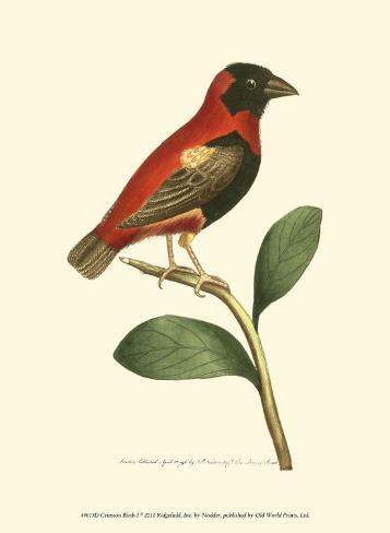 Crimson Birds I Art Print