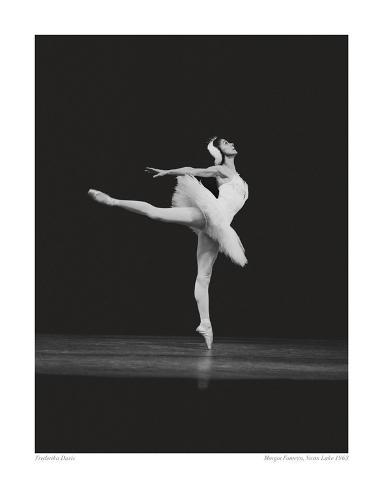 Margot Fonteyn, Swan Lake 1963 Premium Giclee Print