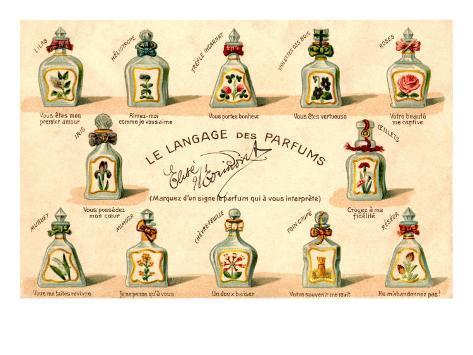 French Perfume Language Art Print