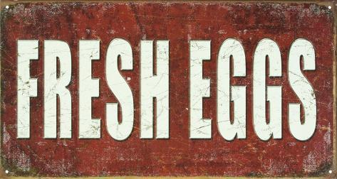 Fresh Eggs Tin Sign