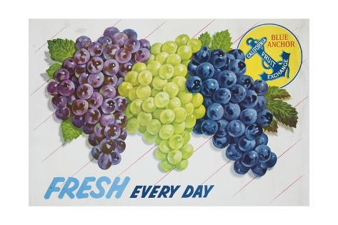 Fresh Every Day Poster Giclee Print
