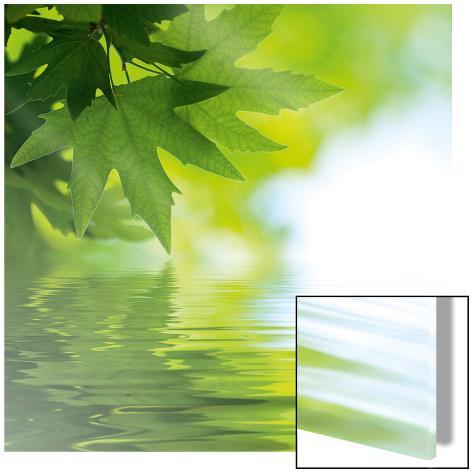 Fresh Leaves Konst på glas