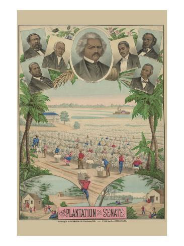 From the Plantation to the Senate Art Print