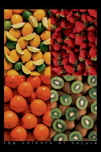 Fruits Stretched Canvas Print