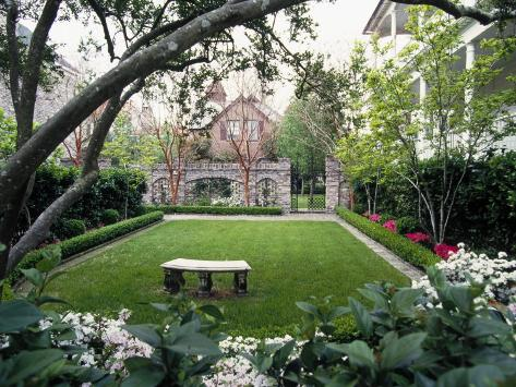 Garden in Residential Home, Charleston, SC Photographic Print
