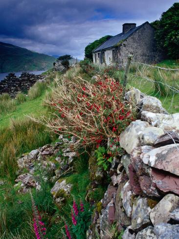 Abandoned Cottage on the Famine Relief Road in Killary Harbour, Connemara, Connaught, Ireland Photographic Print