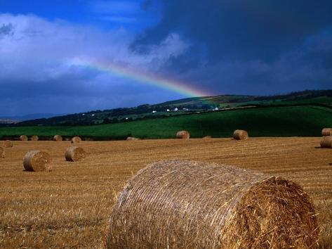 Straw Bales and Rainbow at Harvest Time, Ireland Photographic Print
