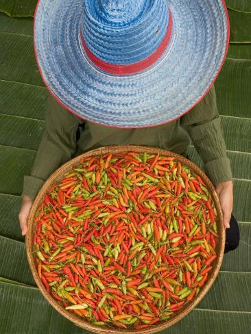 Farmer Selling Chilies, Isan region, Thailand Photographic Print