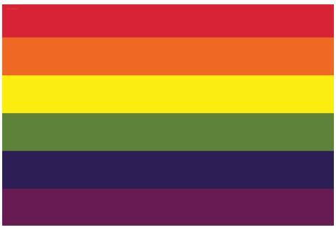 Gay Pride Rainbow Flag Print Poster Poster