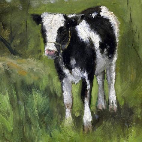 A Black and White Spotted Calf, Standing in a Meadow Art Print