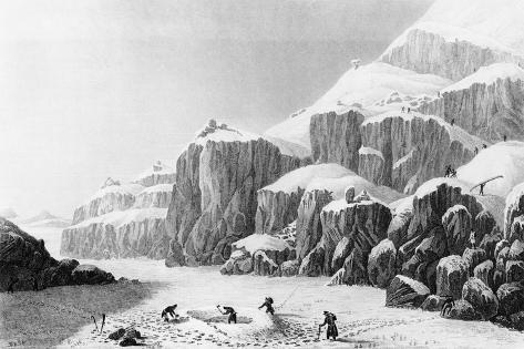 Franklin's Expedition Preparing an Encampment on the Barren Grounds and Gathering Lichen, 1823 Lámina giclée