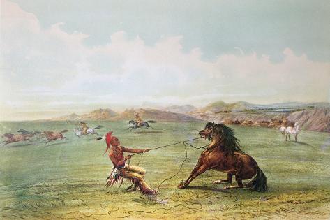 Osage Hunters Catching Wild Horses Lámina giclée