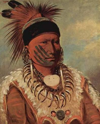 George Catlin (The white cloud, the chief of the Iowas) Art Poster Print Poster