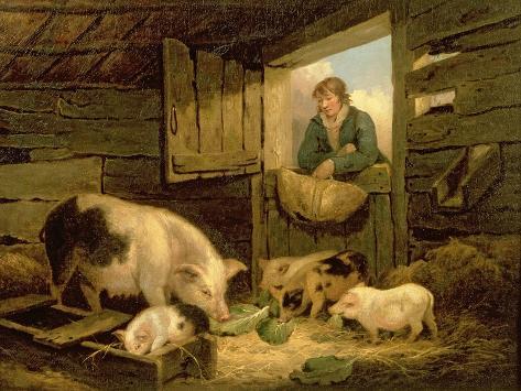 A Boy Looking into a Pig Sty, 1794 Impressão giclée