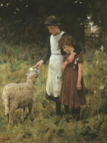 Feeding the Sheep Giclee Print
