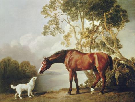 Bay Horse and White Dog Premium Giclee Print