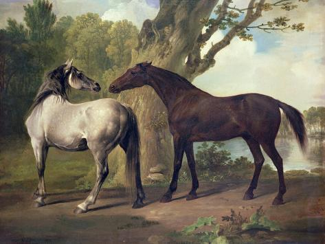 Two Horses in a Landscape Giclee Print