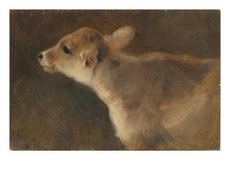 A Calf, 1879 Giclee Print