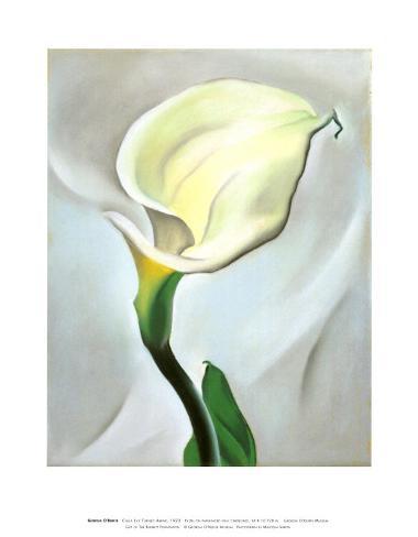Calla Lily Turned Away, 1923 Art Print