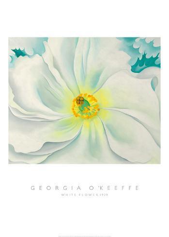 Flor blanca, 1929 Lámina
