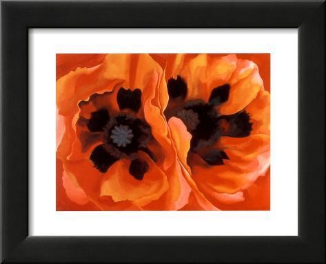 Oriental Poppies Lámina enmarcada con plástico protector