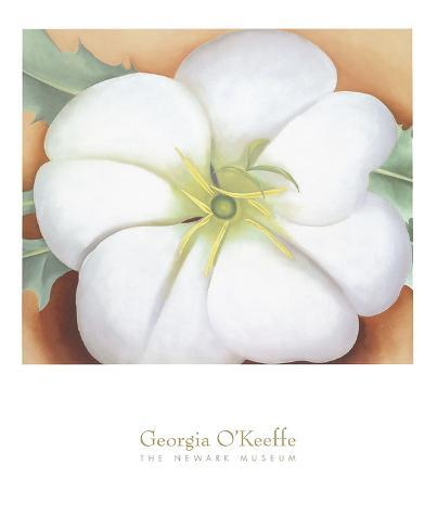 White Flower on Red Earth, No. 1, c.1946 Art Print