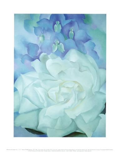 White Rose with Larkspur Art Print