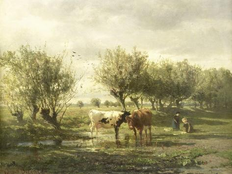 Cows at a Pond Art Print